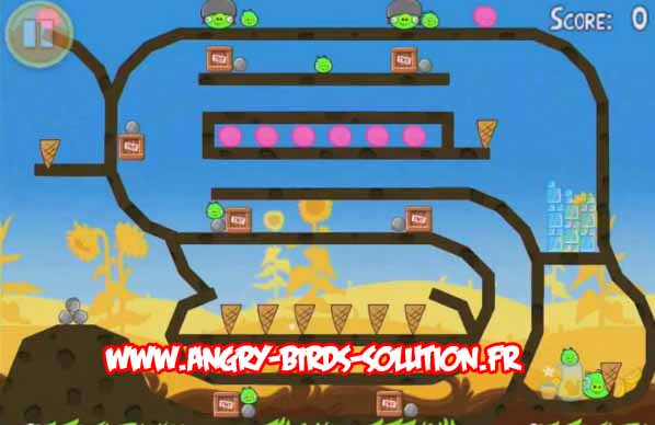 Niveau bonus du premier oeuf en or d'Angry Birds Summer Pignic