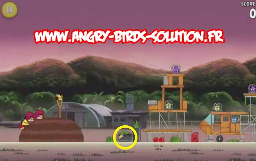 Pomme d'or 10 d'Angry Birds Rio (level 10-7)