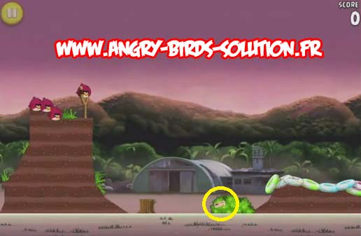 Pomme d'or 11 d'Angry Birds Rio (level 10-8)
