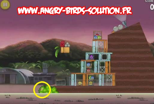 Pomme d'or 2 d'Angry Birds RIO (level 9-2)
