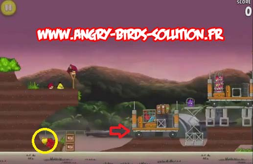 Pomme en or 3 d'Angry Birds Rio (level 9-5)