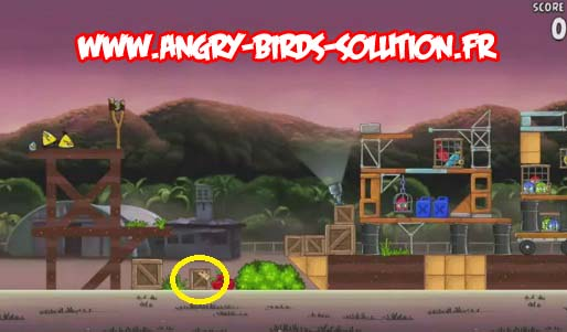 Pomme en or 4 d'Angry Birds Rio (level 9-6)