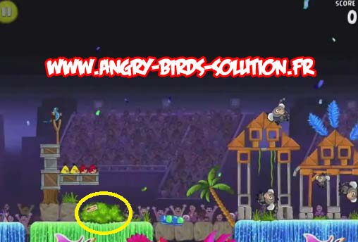 Papaye en or 11 d'Angry Birds RIO (level 8-9)